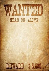 Best Wanted Poster Ideas And Images On Bing Find What You Ll Love